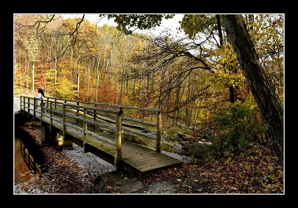 Bridge Over Electric Brook