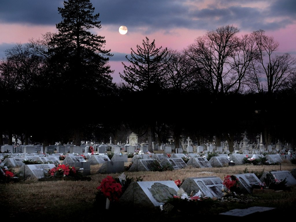 Moon Set Over Cemetary